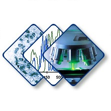 Логотип центра коллективного пользования микроскопического анализа биологических объектов СО РАН