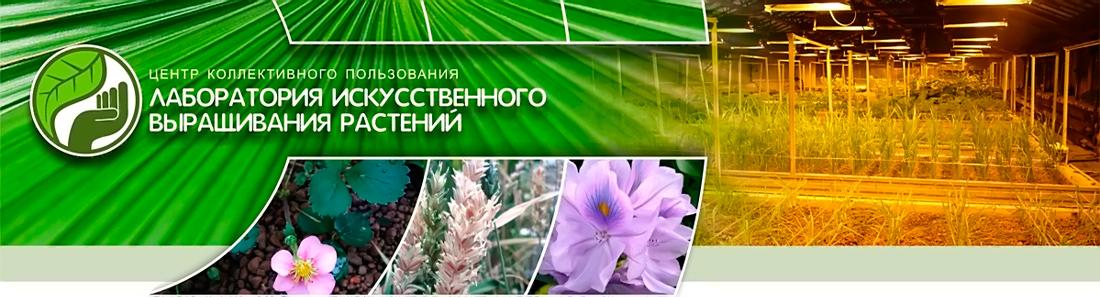 Центр коллективного пользования «Лаборатория искусственного выращивания растений»